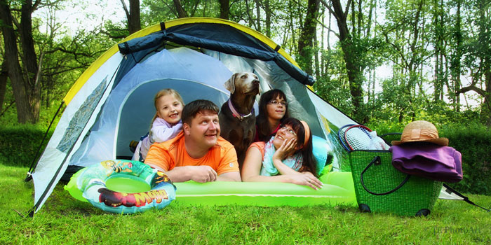 "Tent Dog ""width ="" 700 ""height ="" 350 ""srcset ="" https://hund.info/wp-content/uploads/2016/02/Tenting Dog.jpg 700w, https://hund.info/wp-content/ uploads / 2016/02 / Tenting Dog 300x150.jpg 300w, https://hund.info/wp-content/uploads/2016/02/Tenting Dog-600x300.jpg 600w, https://hund.info/wp-content/ uploads / 2016/02 / Camping-Dog-660x330.jpg 660w ""data-lazy-sizes ="" (max-width: 700px) 100vw, 700px ""></p> <p></p> <p>We are a dog-friendly campsite in the state of Brandenburg.</p> <p></p> <p><em>Simply animal cozy here!</em></p> <p></p> <p>Situated between the lake and the forest, we offer ideal hiking and bathing facilities especially for dogs and their owners.</p> <p></p> <p>On the more than 5000m ² large dog run happy dog ​​acquaintances can be closed. A fenced Hundebadestelle on the campsite grounds invites you to cool down.</p> <p></p> <p>As a new service, we also rent mobile ""sheep fences"". Then the fur noses do not need to be leashed all the time.</p> <p></p> <p>If you want to do something without your dog, we can recommend a professional coach service.</p> <p></p> <p>The camping shop also offers dog food, treats and toys. We offer frozen Barf products in various packs.</p> </pre> <div class='code-block code-block-2' style='margin: 8px auto; text-align: center; display: block; clear: both;'> <script async src="